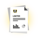 Limited Company Report Icon