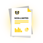 Non-Limited Company Report icon